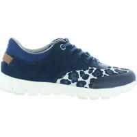 Sapatos Criança Sapatilhas Pepe jeans PGS30211 COVEN BASIC Azul