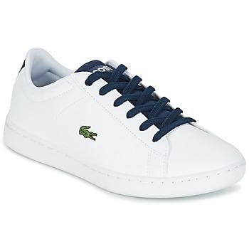Sapatos Criança Sapatilhas Lacoste CARNABY EVO Branco / Marinho