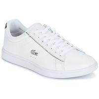 Sapatos Mulher Sapatilhas Lacoste CARNABY EVO Branco