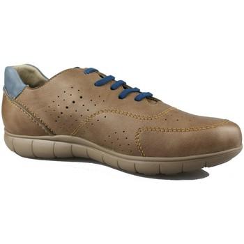 Sapatos Homem Sapatilhas CallagHan WILD HORSE TAUPE