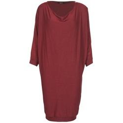 Textil Mulher Vestidos curtos Kookaï BLANDI Bordô