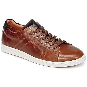 Sapatos Homem Sapatilhas Redskins ORMIL Conhaque