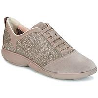 Sapatos Mulher Sapatilhas Geox D NEBULA Toupeira