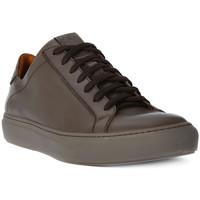 Sapatos Homem Sapatilhas Lion WEST 311 Marrone