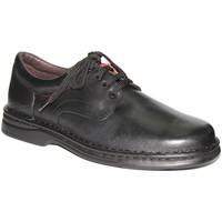 Sapatos Homem Sapatos Tolino Cadarços de sapatos muito resistente em preto negro