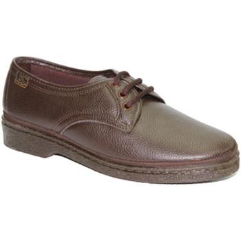 Sapatos Homem Sapatos Doctor Cutillas Sapatos laços pés delicados Cutillas Doctor Brown marrón