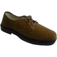 Sapatos Homem Sapatos Vulsega Cadarços trabalhar em camelo camurça projecto marrón