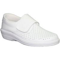 Sapatos Homem Mocassins Farma Trabalho Clog velcro pele cavaleiro branco blanco