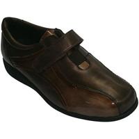 Sapatos Mulher Mocassins Doctor Cutillas Sapatos especiais para modelos Cutillas Doctor Brown marrón