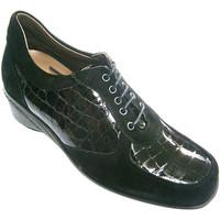 Sapatos Mulher Richelieu Rold?n Sapato de camur negro