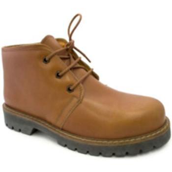 Sapatos Homem Botas baixas Danka Tipo de inicialização Panamá  em Couro marrón