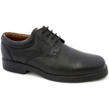 Sapatos Homem Sapatos Danka Garçom cadarço  em Preto negro