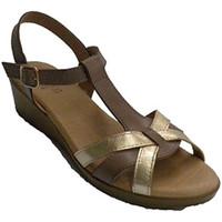 Sapatos Mulher Sandálias Rodri As mulheres vestem sandália fivela tornozelo fivela  em Brown marrón