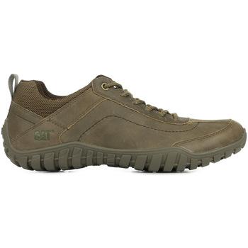 Sapatos Homem Sapatilhas Caterpillar Arise Castanho