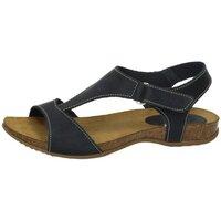 Sapatos Mulher Sandálias Interbios  Azul