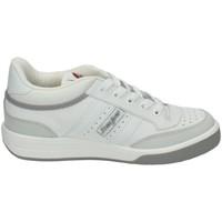 Sapatos Homem Sapatilhas J´hayber  Branco