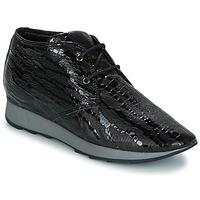 Sapatos Mulher Botas baixas Maruti GIULIA Preto