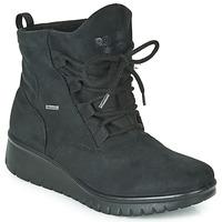 Sapatos Mulher Botas baixas Romika VARESE N08 Preto