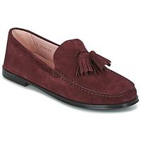Sapatos Mulher Mocassins Pretty Ballerinas CROSTINA RIOJA Bordô