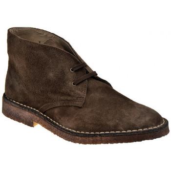 Sapatos Homem Botas baixas Koloski  Castanho