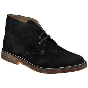 Sapatos Homem Botas baixas Koloski  Preto