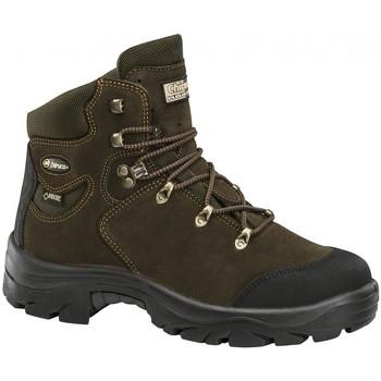 Sapatos Sapatos de caminhada Chiruca Botas  Jabali 11 Gore-Tex Verde