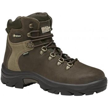 Sapatos Sapatos de caminhada Chiruca Botas  Lince 01 Gore-Tex Verde
