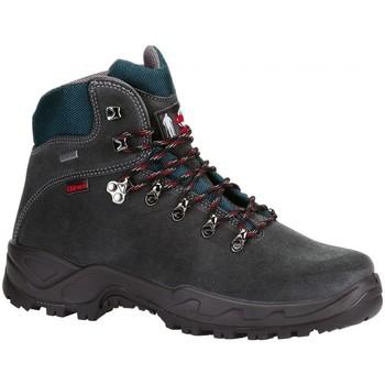 Sapatos Homem Sapatos de caminhada Chiruca Botas  Xacobeo 05 Gore-Tex Cinza