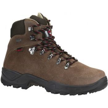 Sapatos Sapatos de caminhada Chiruca Botas  Xacobeo 07 Goretex Castanho