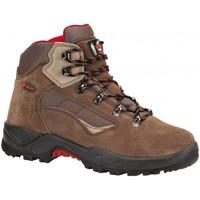 Sapatos Sapatos de caminhada Chiruca Botas  Cameros 02 Castanho