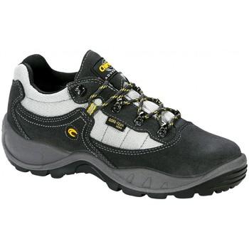 Sapatos Sapatos de caminhada Chiruca Zapatillas  Tasmania 10 Goretex Cinza