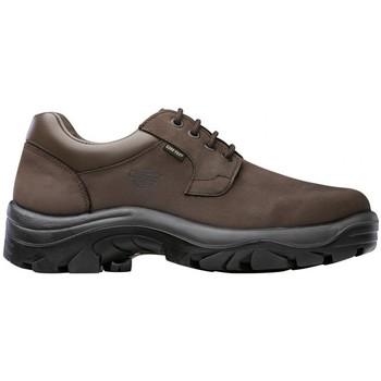 Sapatos Calçado de segurança Chiruca ZAPATOS  FOX ENCISO MARRÓN GORETEX Marrón