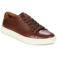 Sapatos Homem Sapatilhas Ralph Lauren JERMAIN Castanho