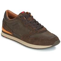 Sapatos Homem Sapatilhas Lloyd EDWIN Castanho