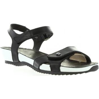 Sapatos Mulher Sandálias Panama Jack DANIA BW B1 Negro