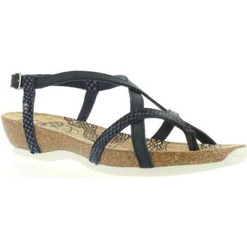 Sapatos Mulher Sandálias Panama Jack DARIA SNAKE B1 Azul
