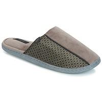 Sapatos Homem Chinelos DIM STAN Toupeira