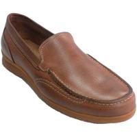 Sapatos Homem Mocassins Pitillos Homem mocassim verão costura  em marrón