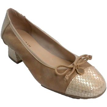 Sapatos Mulher Escarpim Rold?n sapata da mulher de salto baixo Nobu combinados e serpierte  em beige
