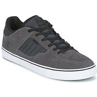 Sapatos Homem Sapatos estilo skate Element GLT2 Cinza / Branco