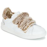 Sapatos Mulher Sapatilhas Ippon Vintage FLIGHT POLAR Branco / Cobre
