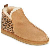 Sapatos Mulher Chinelos Shepherd ANNIE Castanho