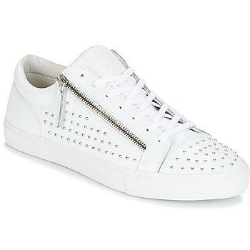 Sapatos Homem Sapatilhas Jim Rickey ZED STUDS Branco / Prateado