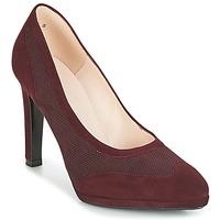 Sapatos Mulher Escarpim Peter Kaiser HERNA Bordô