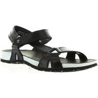 Sapatos Homem Sandálias Panama Jack FRODO BW C1 Negro