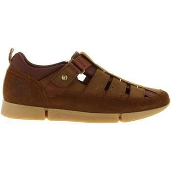 Sapatos Homem Sandálias Panama Jack ALBATROSS C4 NOBUCK CUERO Marrón