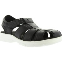 Sapatos Homem Sandálias Panama Jack SHERPA BW C1 PULL-UP NEGRO Negro