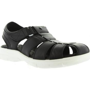 Sapatos Homem Sandálias Panama Jack SHERPA BW C1 Negro