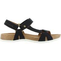 Sapatos Homem Sandálias Panama Jack FRODO NAVY C1 NOBUCK MARINO Azul