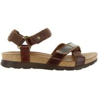 Sapatos Homem Sandálias Panama Jack SAMBO CLAY C1 Marr?n